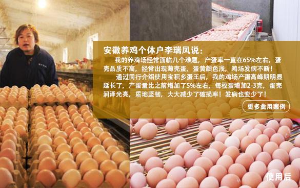 安徽养鸡个体户李瑞凤