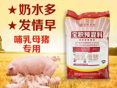 5%哺乳母猪预混合饲料